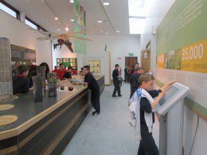 Education Programme at Clara Bog Visitor's Center